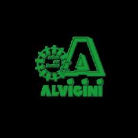 alvigini
